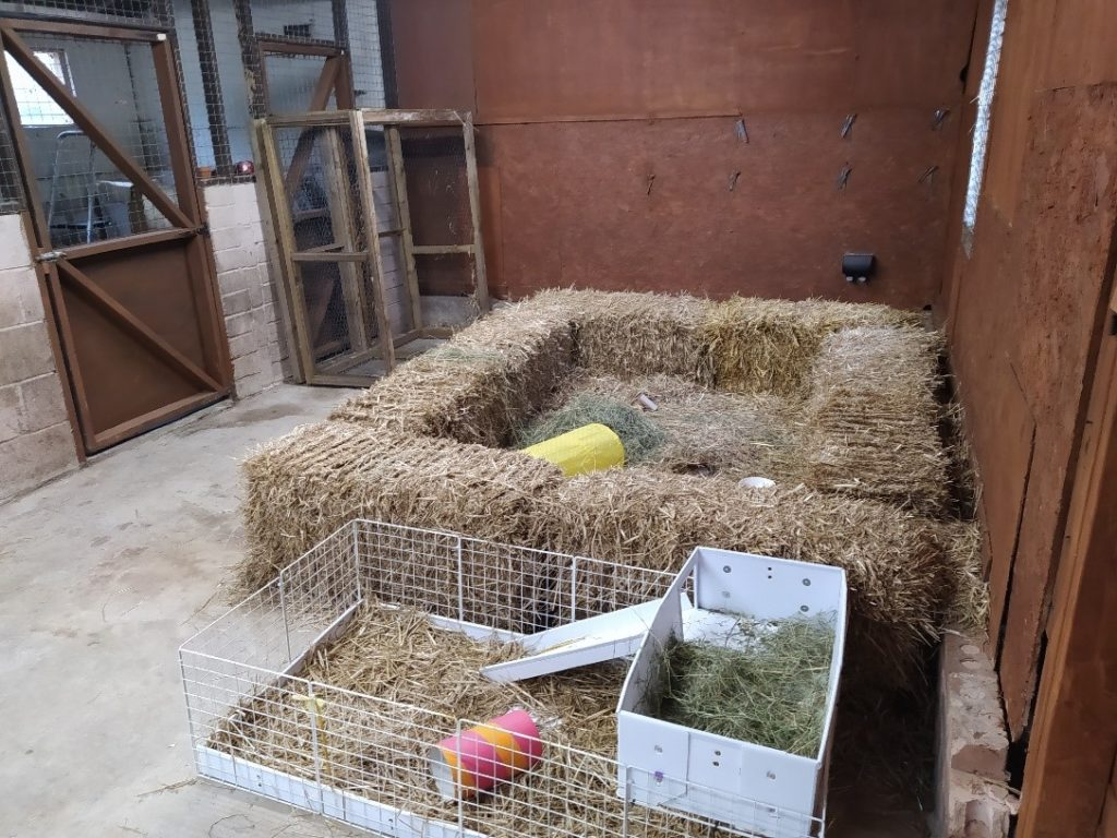 The picture shows the inside of the barn, the barn is made from brick and wood. Shown in the picture is an area for small animals edged with rectangular bales of hay, giving the animals a safe space in the middle. At the front of the picture there is also a small metal fence enclosure lined with straw.